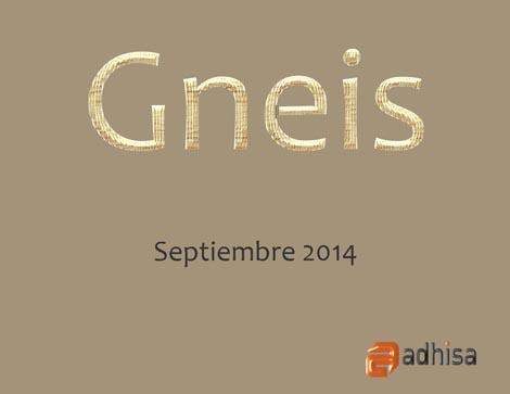 Colecci�n Gneis